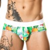 GIGO Tropic Brief
